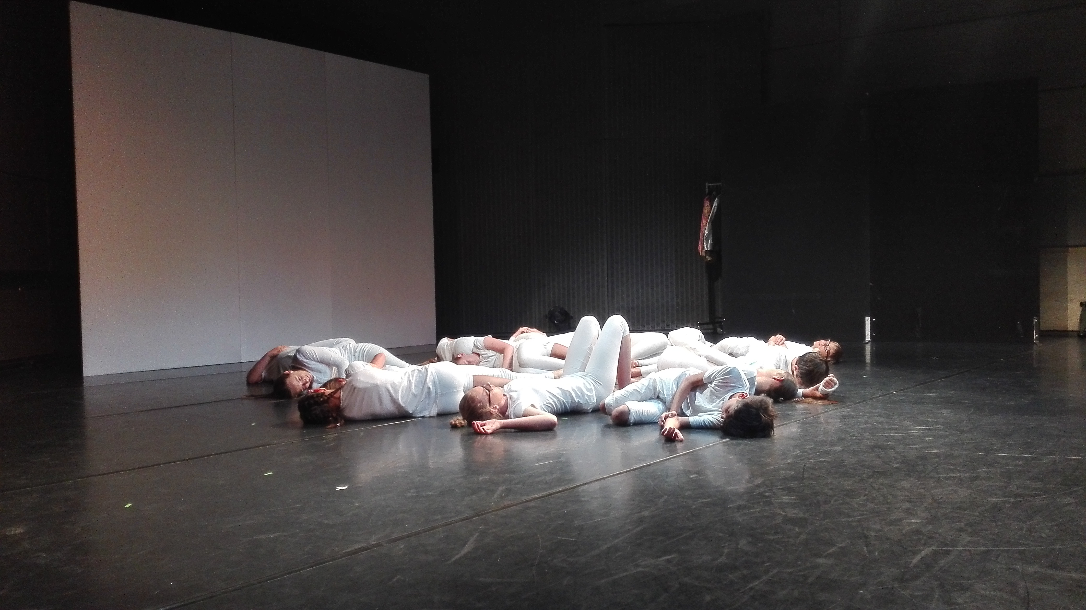 Schultheatertage 2017 am Theater Hof
